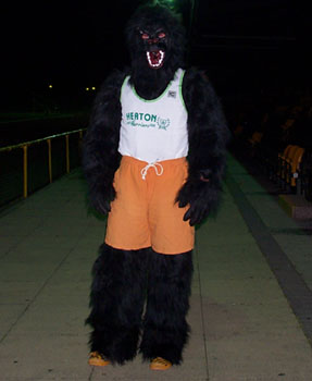 John Moore in a Gorilla costume, over which he is wearing orange knee-length shorts and a Heaton Harriers vest.
